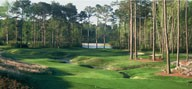 Thumbnail for: Waccamaw Golf Trail New 2 Round Special
