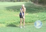 Thumbnail for: Chipping Stance
