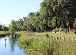 Thumbnail for: Willbrook Plantation Golf Club-Beautiful Lowcountry Golf