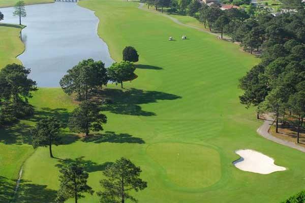 Myrtlewood Palmetto Golf Ball Image