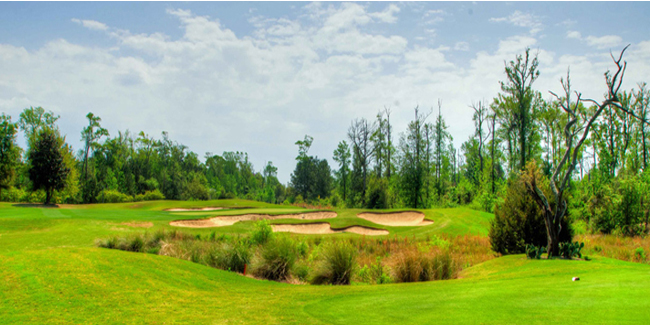 Image of Barefoot Resort - Fazio Course