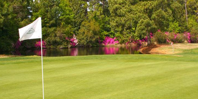 Beachwood Golf Course Myrtle Beach Coupons