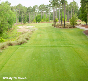 TPC Myrtle Beach 7th Hole