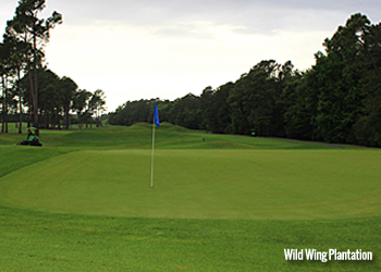 Wild Wing Plantation Golf Club